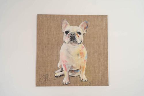 French bulldog / フレンチブルドック