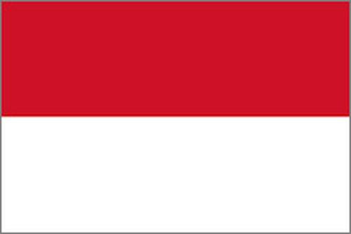 インドネシア バリ神山