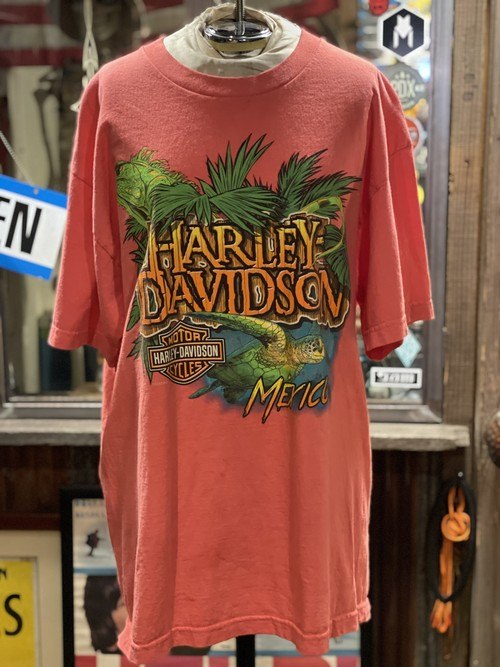 ハーレー  ダビッドソン メキシコ イグアナ MEXICO tシャツ harley