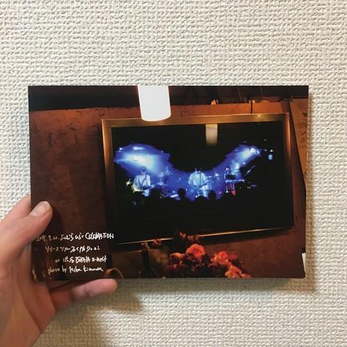 20Pフォトブック・よしむらひらくCELEBRATION release tour final photo by Mika Kitamura