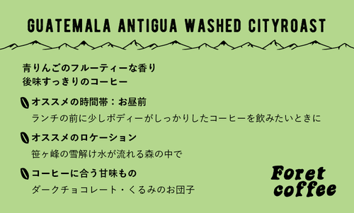 『豆150g』スペシャルティコーヒー Guatemala Antigua Azotea washed City Roast 150g