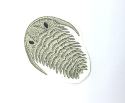 三葉虫■化石
