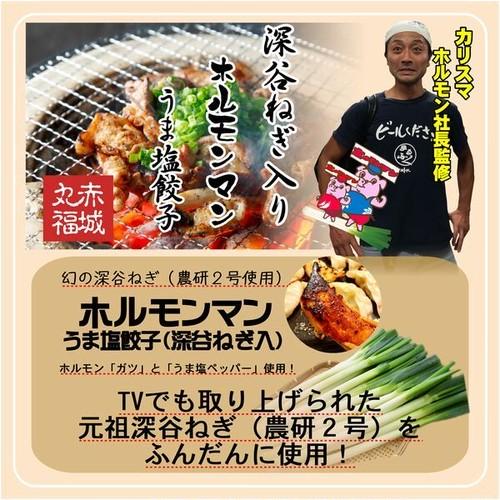 【元祖深谷ねぎ使用】ホルモンマンうま塩餃子(1袋15個入)