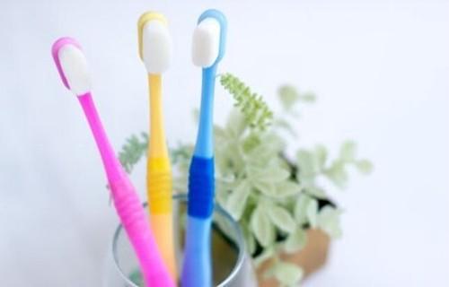 【新発売】究極の歯ブラシ『天使の羽ブラシ』Mサイズ ブルー色(大型犬・人用)