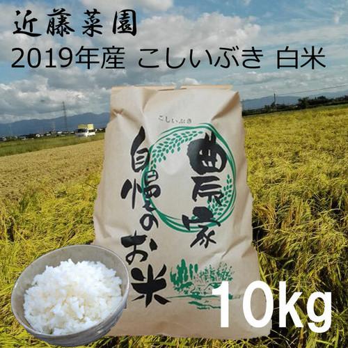 2019年 新潟県産 令和1年産 こしいぶき 白米 10kg 近藤菜園