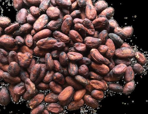 ベトナム カカオ66%  Bean to Bar チョコレート