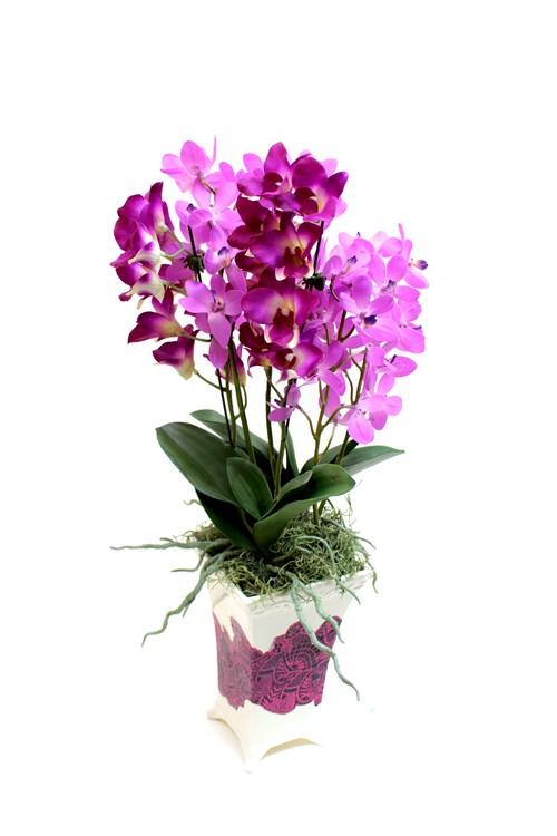 【名入れ対応可】お祝い花