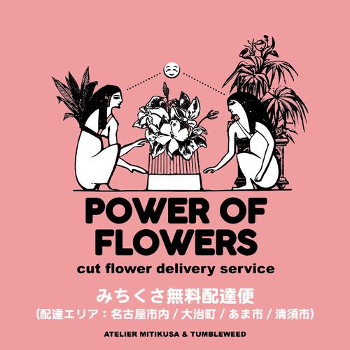 【近郊無料配達便】< 5月の切り花セット> POWER OF FLOWERS