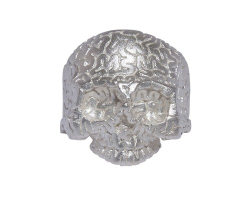 Surface Brain-Skull Ring
