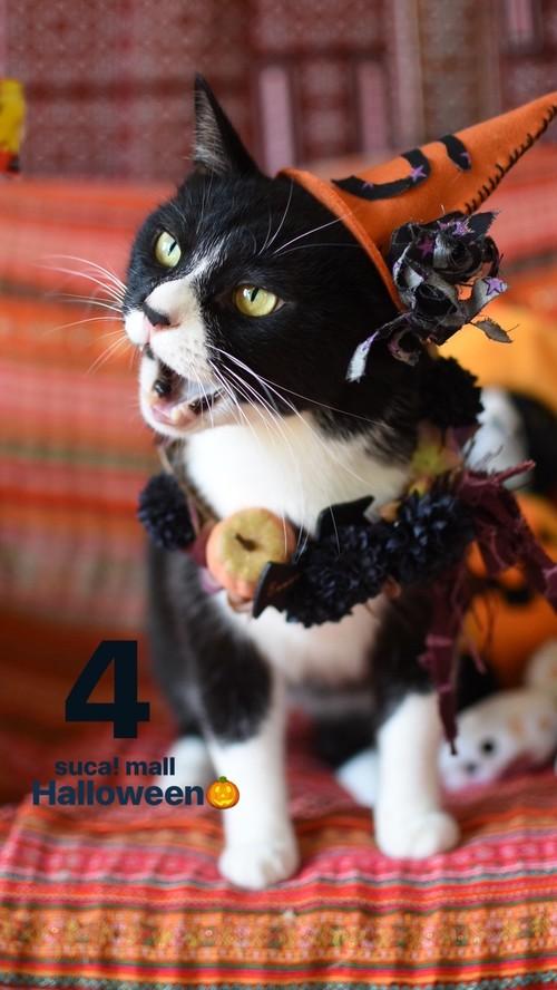 4*Halloween!! スカとおそろいリース☆