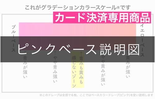 (カード決済) ピンクベース説明図