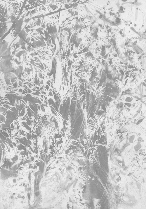 松井亜希子「forest 12」