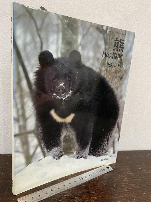 80's  熊 月の輪熊 飯島正広