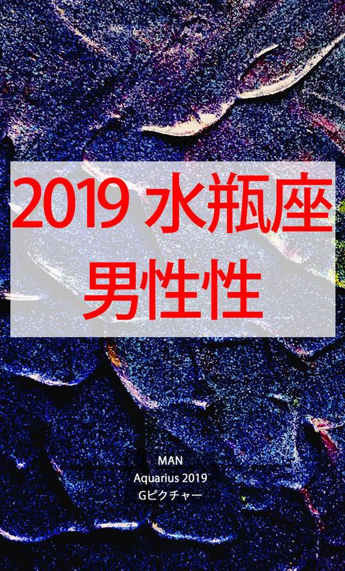 2019 水瓶座(1/20-2/18)【男性性エネルギー】