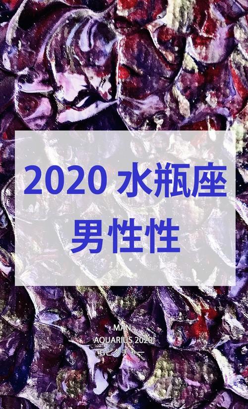 2020 水瓶座(1/20-2/18)【男性性エネルギー】
