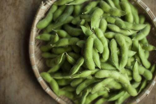 あけぼの大豆 贈答用 極選 枝豆