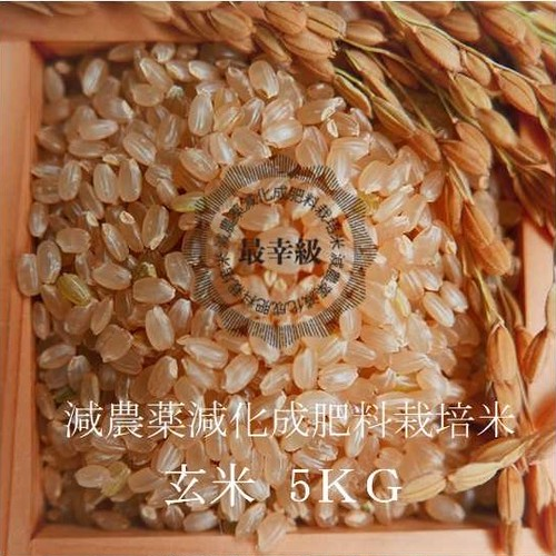 減農薬栽培 〈30年産〉南魚沼産コシヒカリ 玄米5kg