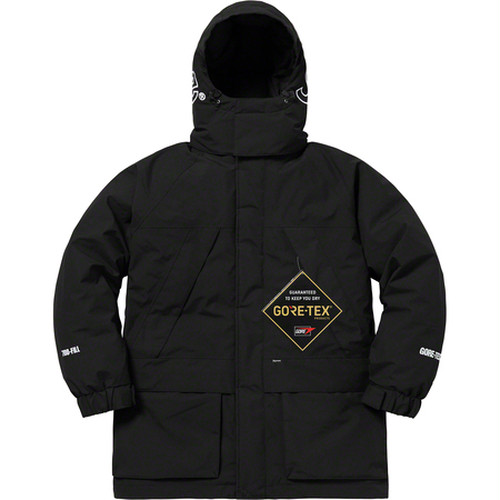 Supreme GORE-TEX 700-Fill Down Parka