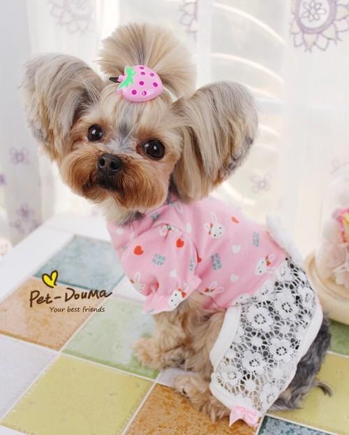 【アウトレット】★かわいい犬服ワンピ/ドレス  うさちゃんレースロンパース