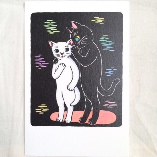 ポストカード/黒猫の秘密