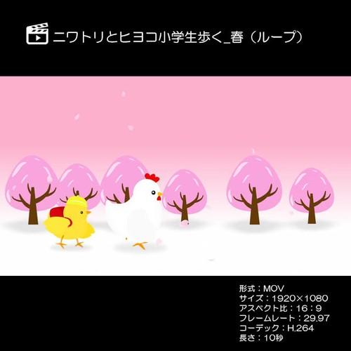 ニワトリとヒヨコ小学生歩く_春(ループ)