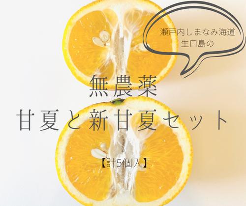 生口島の無農薬甘夏&新甘夏セット:瀬戸内しまなみ海道・生口島の恵み