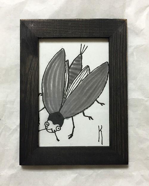 ビロードの羽