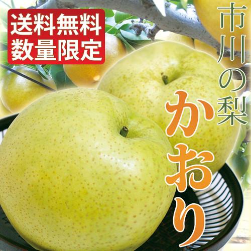 かおり 梨 大玉 7~8個入り 千葉県市川産