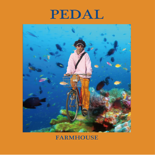 FARMHOUSE PEDAL