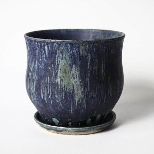 Plants Pot -MIDNIGHT STARDUST- (I)