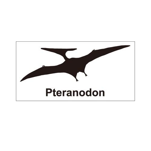 恐竜ステッカー プテラノドン