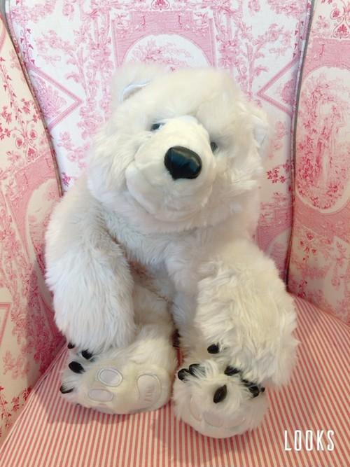 クマのぬいぐるみ♪ Polar Bear Soft Toy