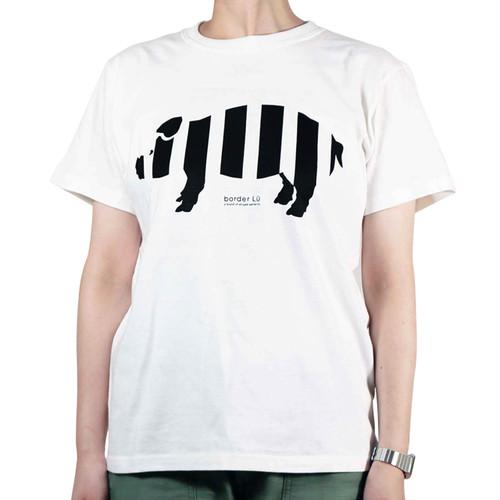 レディースTシャツ ホワイト