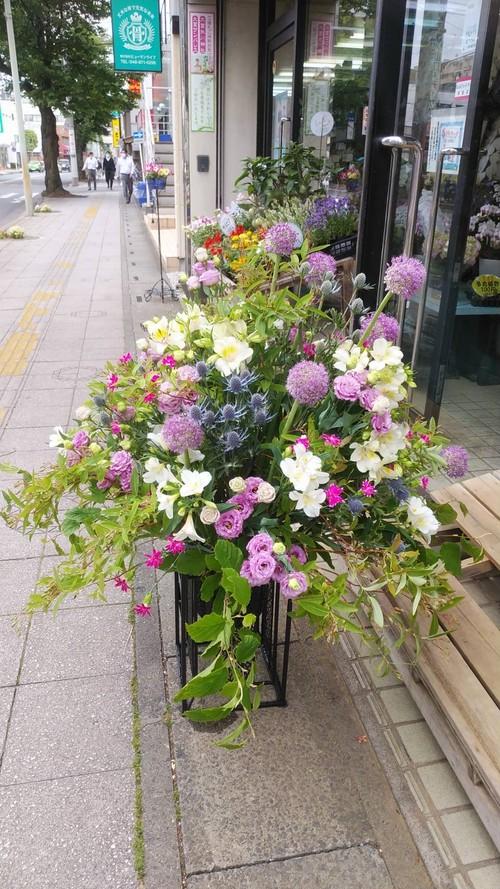 季節の受付花