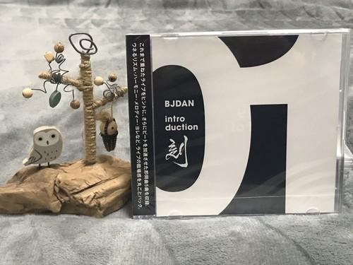 INTRODUCTION 01 刻 TOKI /  BJDAN CD