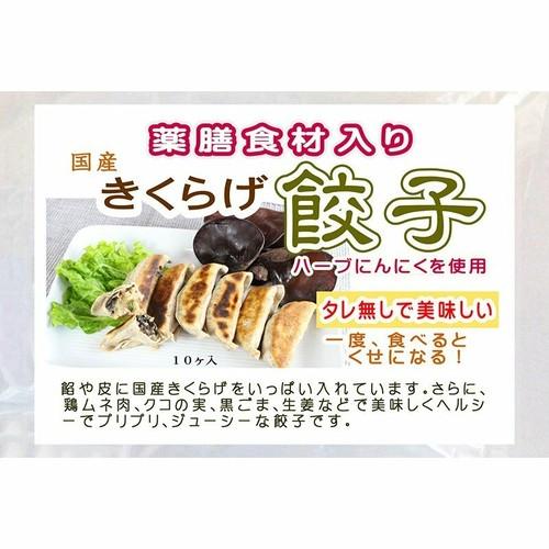 きくらげ 薬膳餃子 ☆10個パック☆