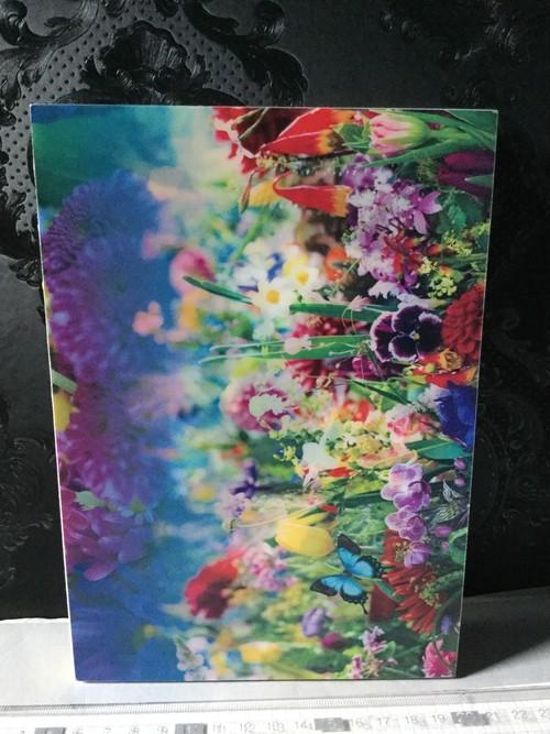 サイン earthly flowers,heaven colors 蜷川実花写真集