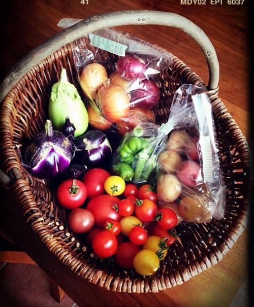 Vegeta屋お試し野菜セット(春・夏)