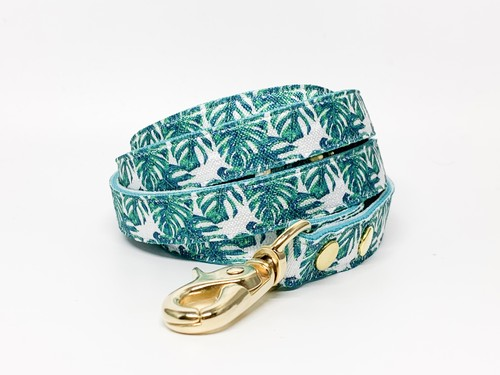 Leash(Monstera)