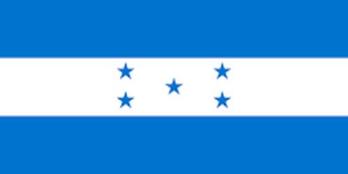 【10月限定】Honduras Tepanguare -Washed-   ~ホンジュラス テパングアレ農園 ウォッシュド精製~