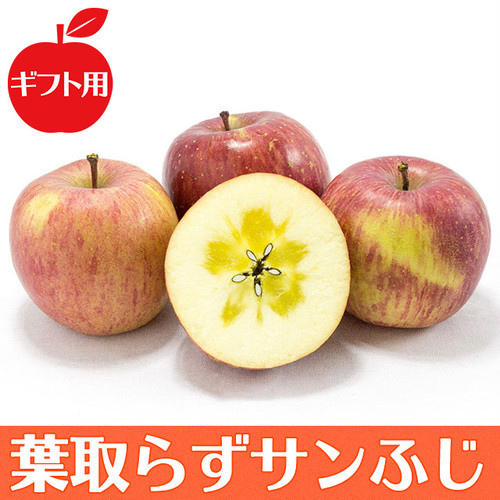 【ギフト用】葉取らずサンふじ 5kg| りんごの王様がさらに美味しく