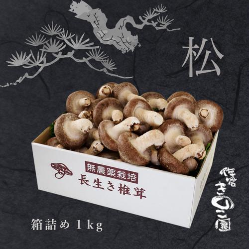長生き椎茸 極上『松』箱詰1kg