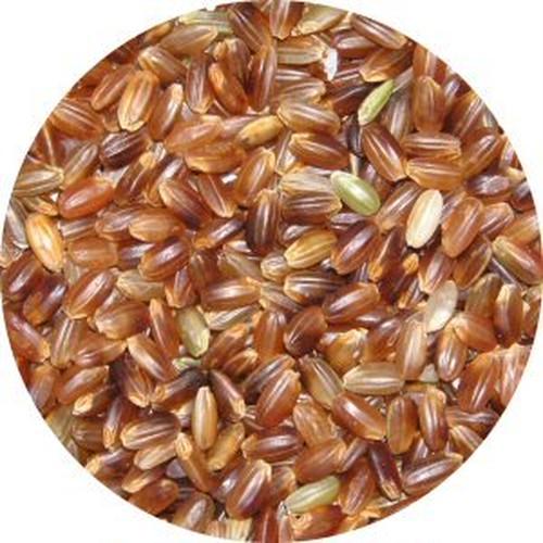 農薬不使用 古代米 赤米 1kg