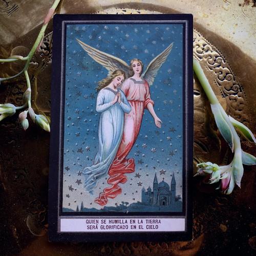 夜空の天使のカード