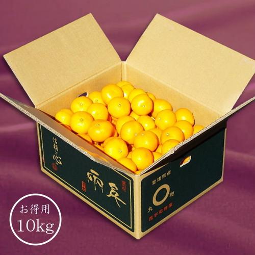 「日の丸みかん 千両」 10kg 良品