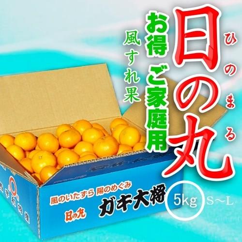 【予約】愛媛県西宇和産みかん「日の丸 ガキ大将」風スレ果 5kg S/M/Lサイズ