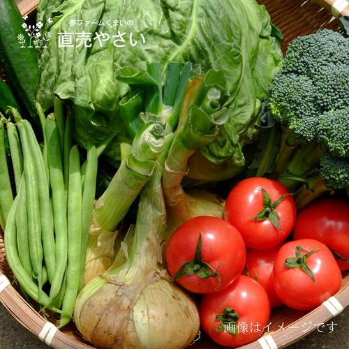 送料無料 9月の朝採り直売野菜セット 5点セット 夏野菜 毎週土曜日発送予定  【冷蔵便】農家直売