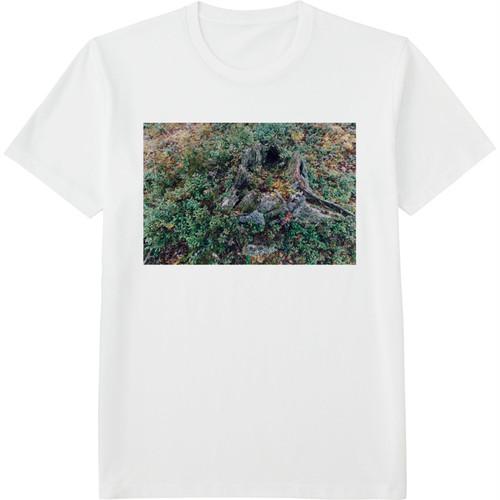 18.Finland100 Tシャツ / 秋の森にて