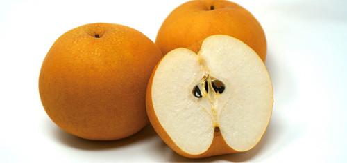 果実職人の極上和梨 5kg