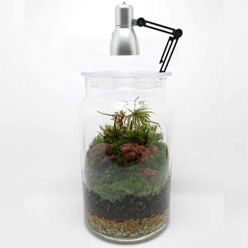 苔ボトル Kokebottle Moss bottle ライト付きセット 022